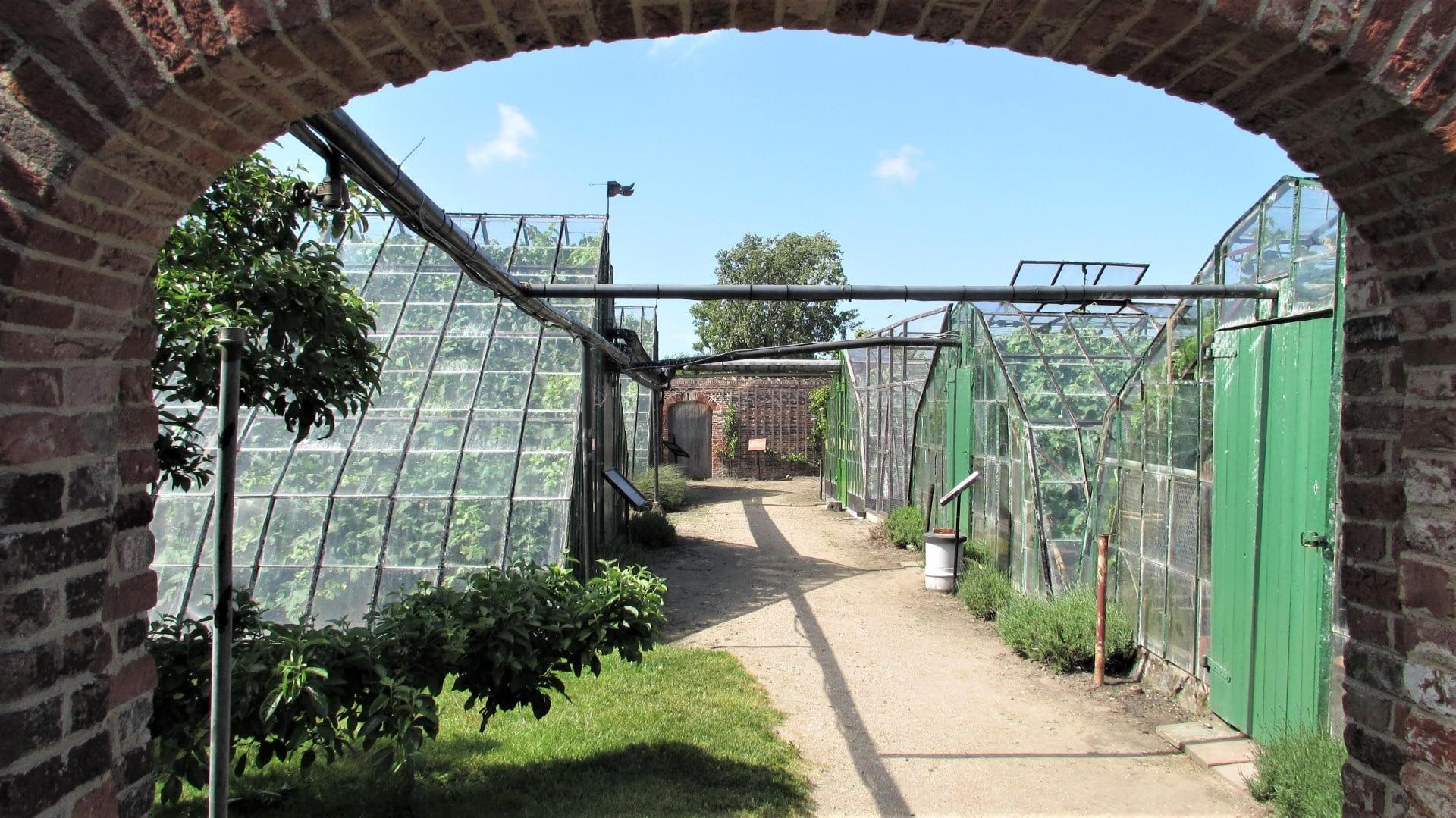 doorkijkje door een stenen poort op oude druivenkassen met groene deuren bij Historische Druivenkwekerij Sonnehoeck in het Westland