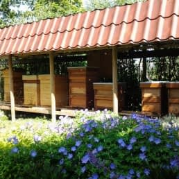 bijenkassen van Natuurlijk Westland in het Westland