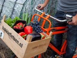 rode fiets met een houten kratje (bakkie) voorop met daarin Westlandse groenten bij Bakkie Fietsen in het Westland