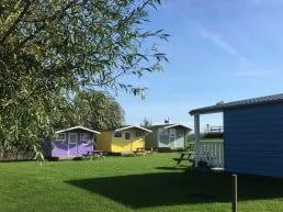 Groen grasveld met paarse, gele en groengrijs geschilderde trekkershutjes bij Minicamping Zwetzone in het Westland