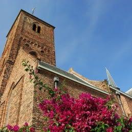 kerktoren van de Oude Kerk in Naaldwijk van onderaf gefotografeerd met bomen met paarse bloemen op de voorgrond in het Westland