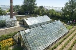 luchtfoto van de historische druivenkassen in de tuin van het westlands museum