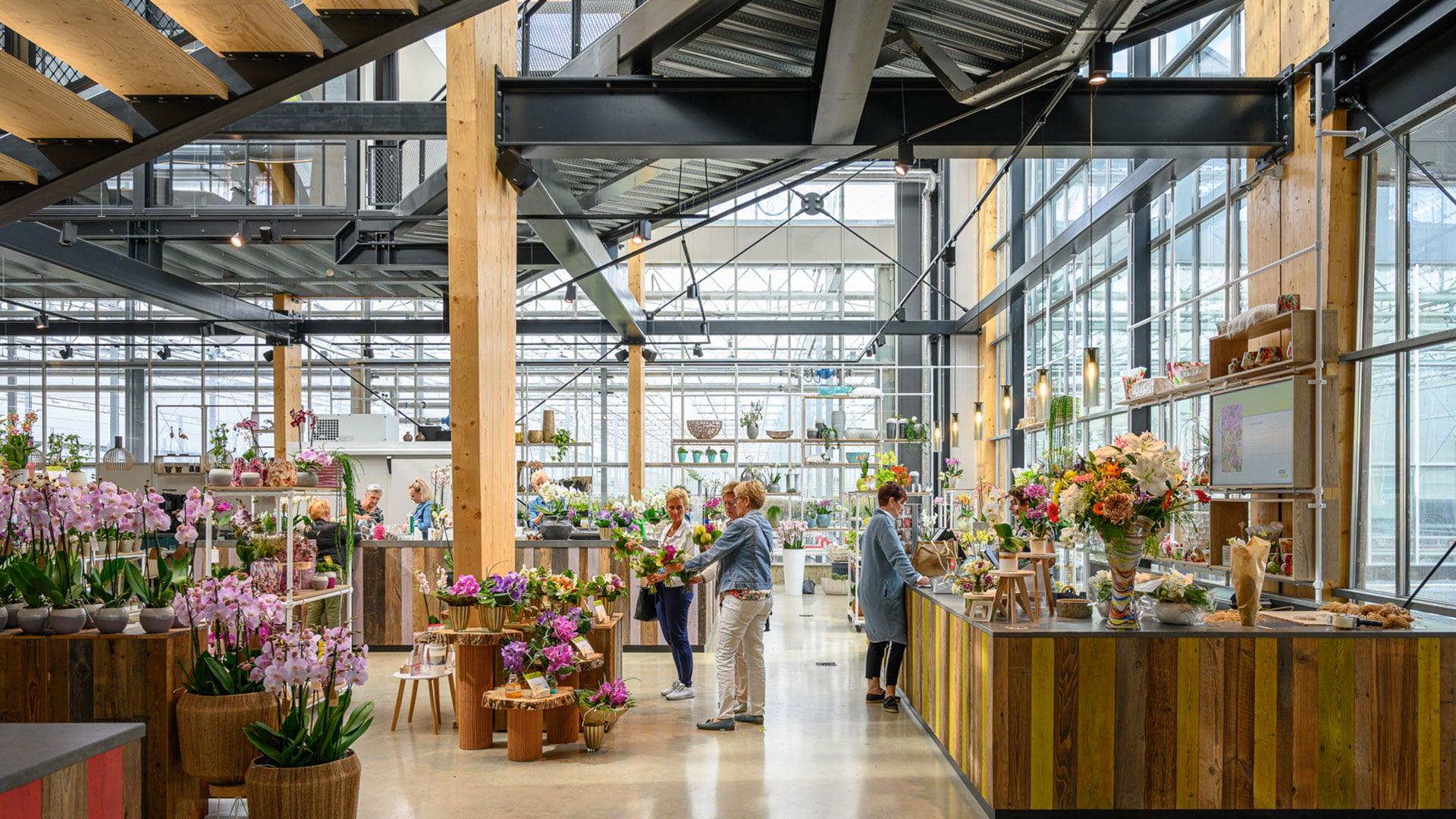 ruime en lichte winkel van Ter Laak Orchids in het Westland gevuld met de orchideeën en phalaenopsis