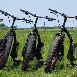 zwarte stoere elektrische steps met de naam Kickbikes van De Tuinderij staan in een groen weiland in het Westland