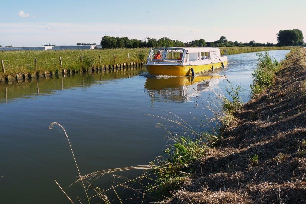 gele rondvaartboot van Rondvaart Westland in het westland