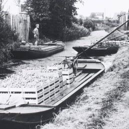 historische zwart-wit foto van een tuinder die vanaf de kant met een houten stok zijn platte boot voortduwt met daarop kisten met groenten en fruit in het Westland