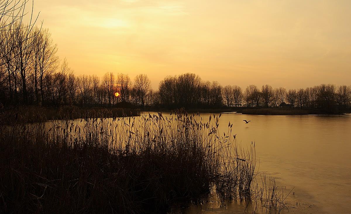 foto van een opkomende zon over het meer van recreatiegebied Het Prinsenbos in het Westland