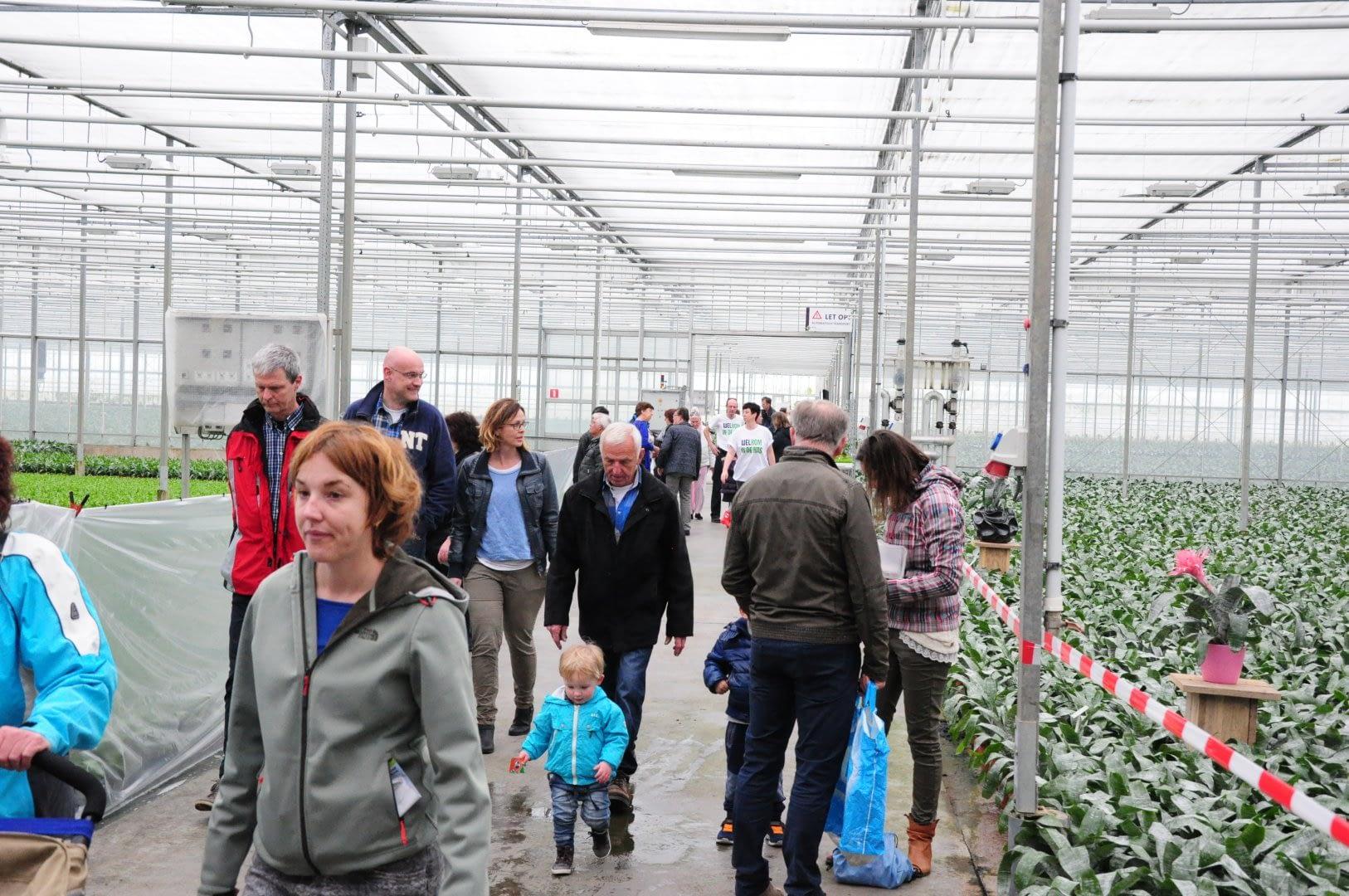 bezoekers aan Kom in de Kas Westland lopen door een kas met planten in het Westland