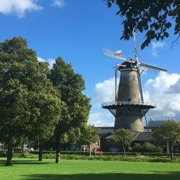 Hofpark in Wateringen in het Westland met een molen, gras en bomen